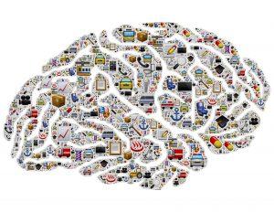 brain-954823_1920